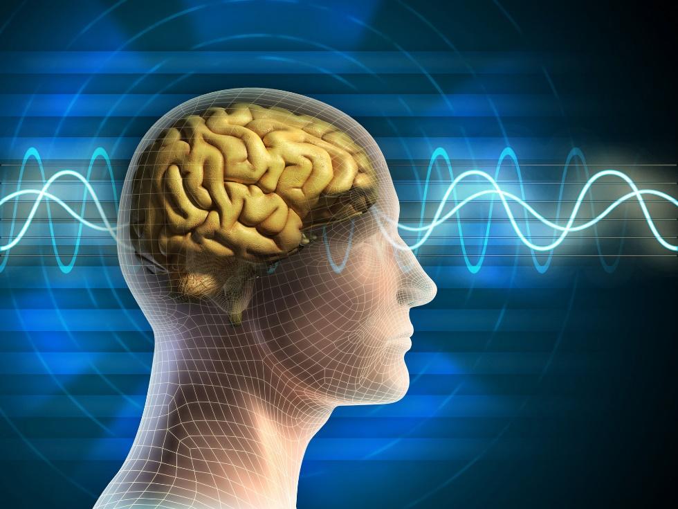 Az agy, mint biometrikus azonosítási módszer