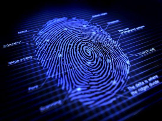 Az ujjnyomat azonosításának alapjául szolgáló jegyek