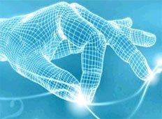 A biometria alapjai