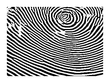 Matematikai módszerek a biometriában 2.