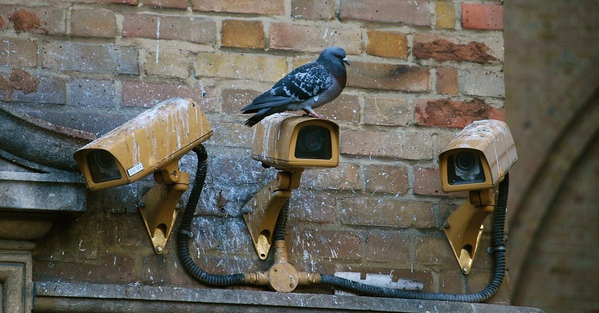 Így válassz CCTV kamerát! 1. rész a CCTV háború alapozása Forrás: https://1drv.ms/f/s!At6SwnPVDy5Qtm7he2IUj6fpeLxq