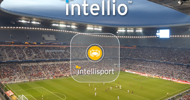 Intellio a Haladás Sportkomplexumban Forrás: intellio