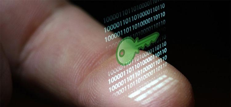 biometrikus-cover